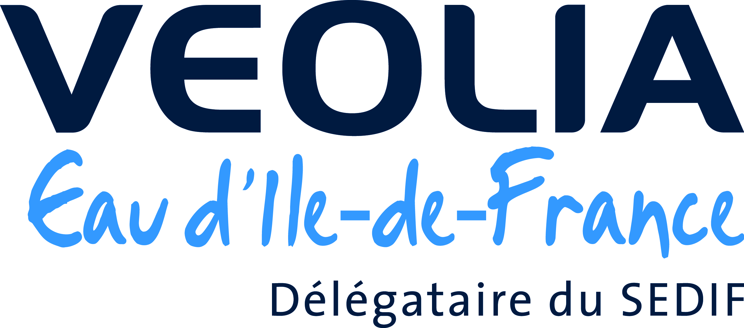 logo vedif - copie